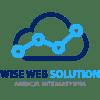 Strategie prowadzenia biznesu w internecie – Wise Web Solution Logo